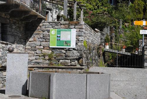 Bordei Fontana 3