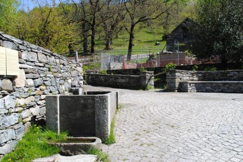 Bordei Fontana 2